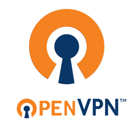 Portable OpenVPN Free Download