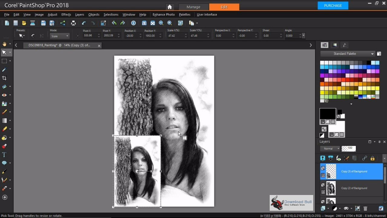 Portable Corel PaintShop Pro 2018 20.0 Overview