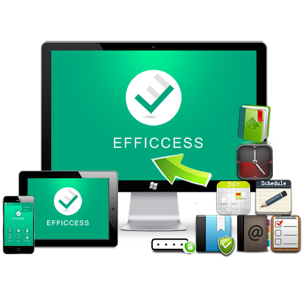 Portable Efficient Efficcess 5.5 Free Download