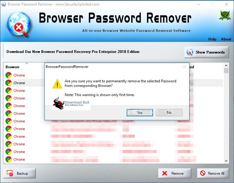 Portable Browser Password Recovery Pro Enterprise Edition 3.5
