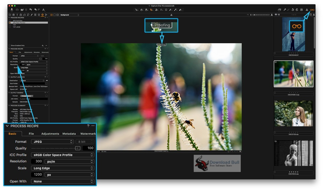 Portable Capture One Pro 12.1