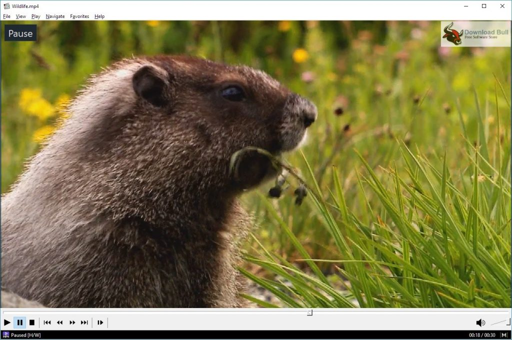 Portable Media Player Classic Home Cinema 1.8 Download