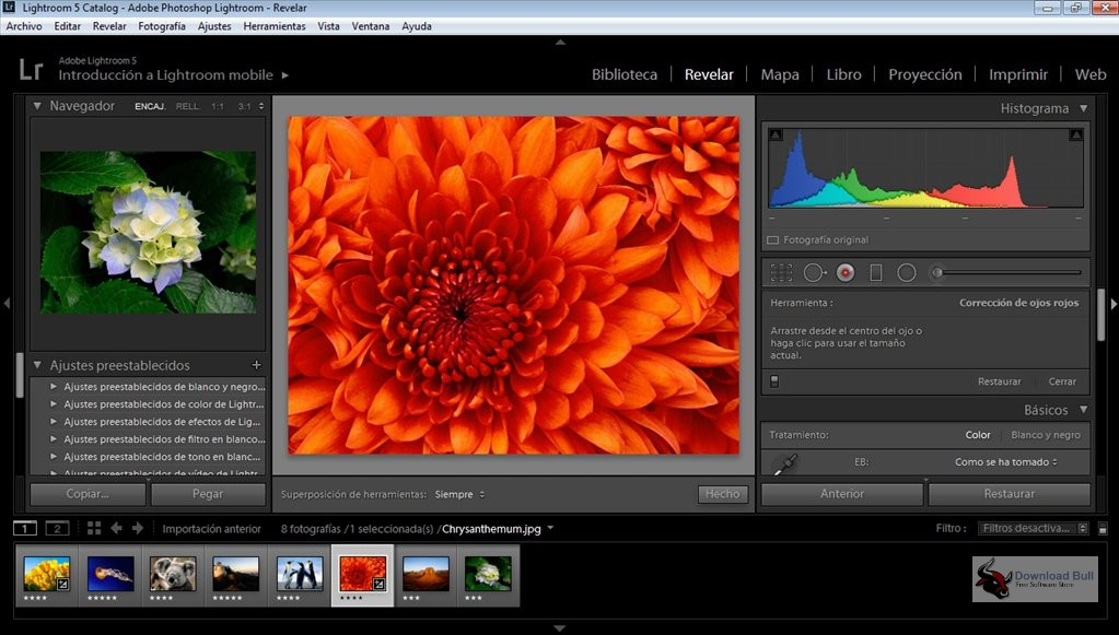 Portable Adobe Photoshop Lightroom Classic CC 2020 v9.1 Download